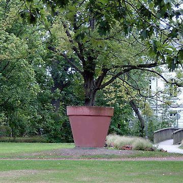 Timm Ulrichs, Hornbeam with Concrete Flower Pot, 1969