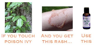 Defeat Poison Ivy With Tea Tree Oil: Posion Ivy Cure, Essential Oil, Camping, Tea Tree Oil, Defeat Poison, Oil Poison Ivy, Gardening, Cures For Poison Ivy, Ivy Rash