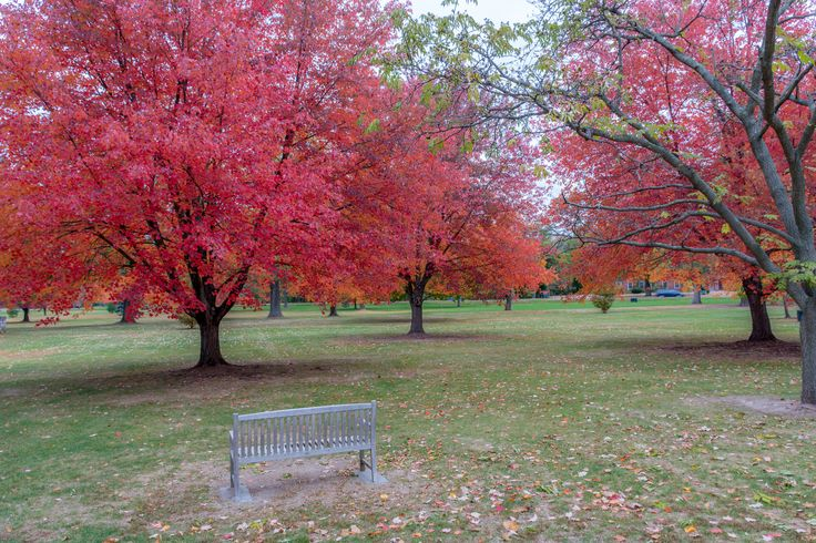 North Andover Town Common taken Oct 24, 2015