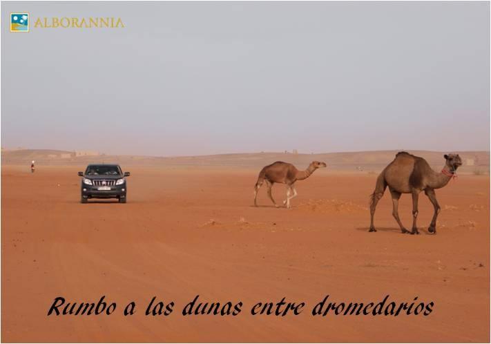 Las Grandes Dunas de Merzouga, 'el tráfico del desierto'