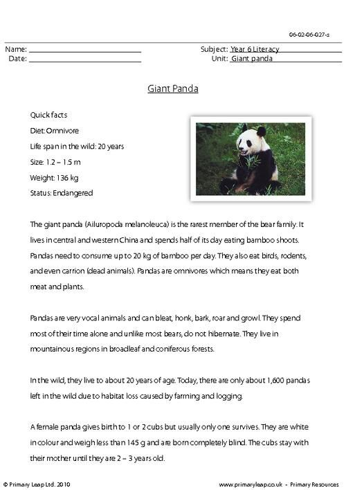 This Ks2 Reading Comprehension Includes A Passage With