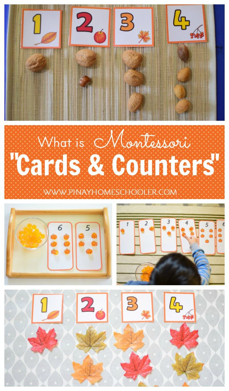 Montessori cards and counters