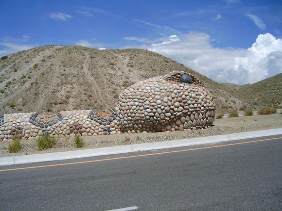 Rock Snake in Albuquerque New Mexico