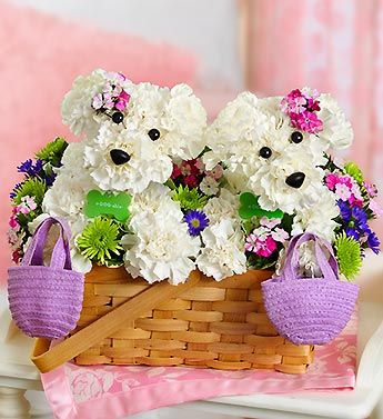 """Furever Friends™ Two's company with our delightful, double-sized a-DOG-able® bouquet. Ideal for surprising your best friend, sister, Mom or any close friend, this playful pair of puppy-shaped white carnation arrangements is surrounded by a gathering of colorful fresh blooms. With matching pink floral accents and mini purple totes, these """"friends furever"""" are ready to celebrate anything from a birthday bash to a bridal shower to a day at the spa."""