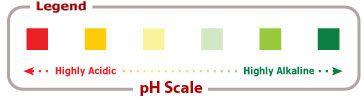 Ph Foods Scale: Acid Alkaline Foods, Food Lists, Chart Legend, Alkaline Acidic Foods, Food Charts, Diet Chart, Chart Complete, Food Ph