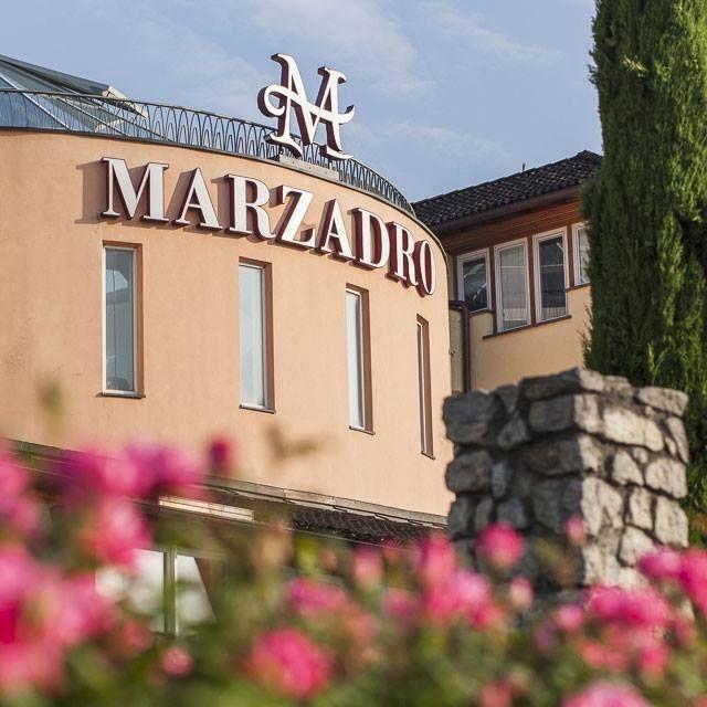 Distilleria Marzadro e i primi fiori fioriti di questa primavera trentina