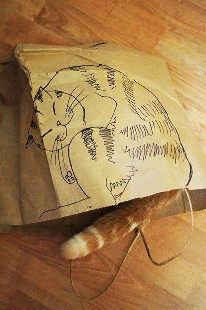Supercute!   #cat #bag