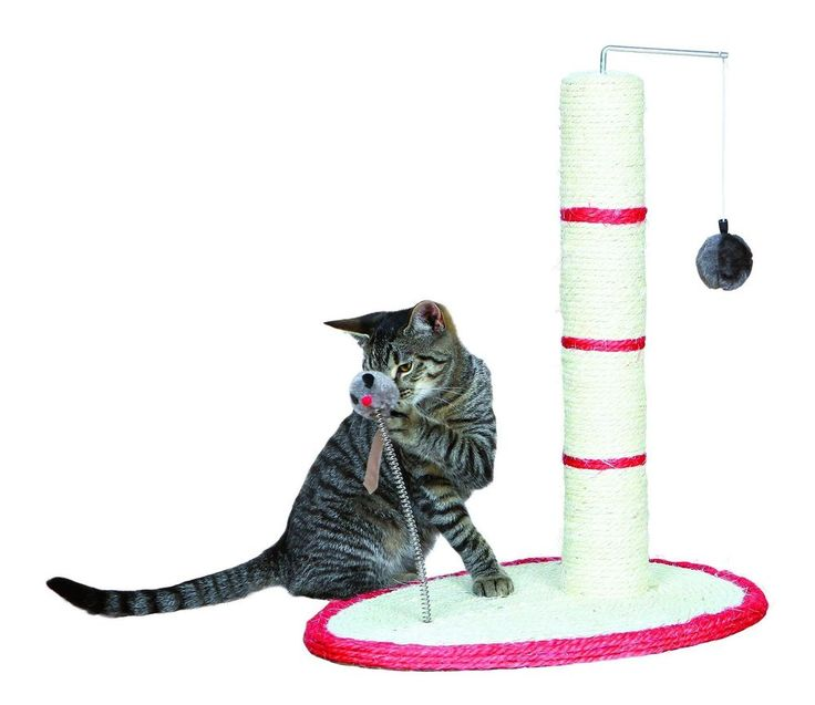 50cm Pet Kitten Cat Scratching Post Sisal Hanging Interactive Toy Rotatable Pole