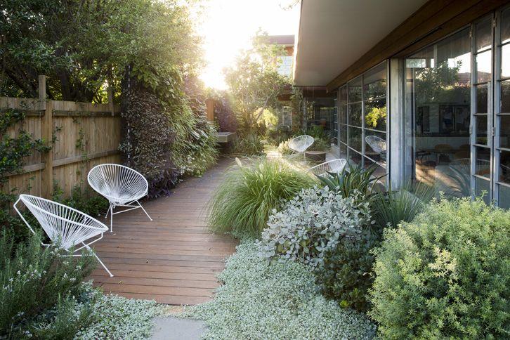 stylish garden deck with long grasses | adamchristopherdesign.co.uk