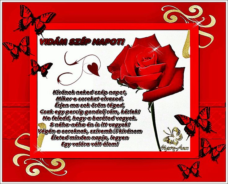 Csillogó szép napot! rózsa s 06 képeslapok