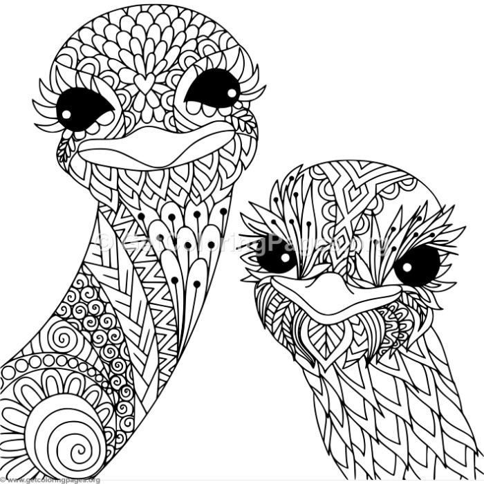 Free Download Zentangle Ostrich Coloring Pages Coloring