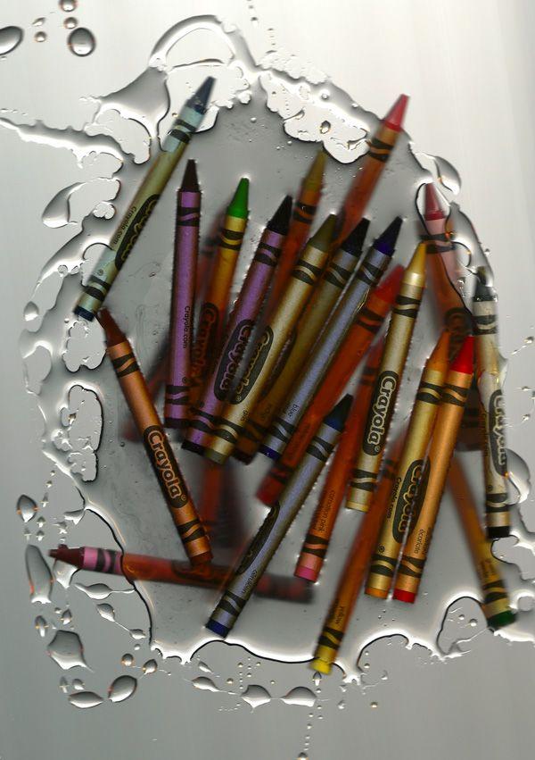 SCANOGRAMS - Missy Rosa   Graphic Designer