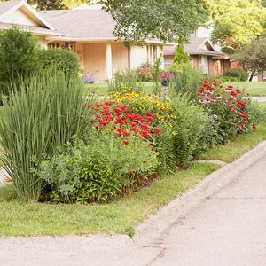 34 best Curbside Parkway Landscaping images on Pinterest