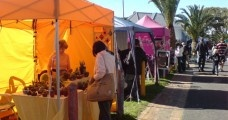 Sunday Markets in Cape Town
