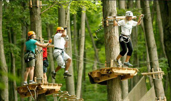 Arbraska - Parc Mont-St-Grégoire - Activités - Parcours dans les arbres