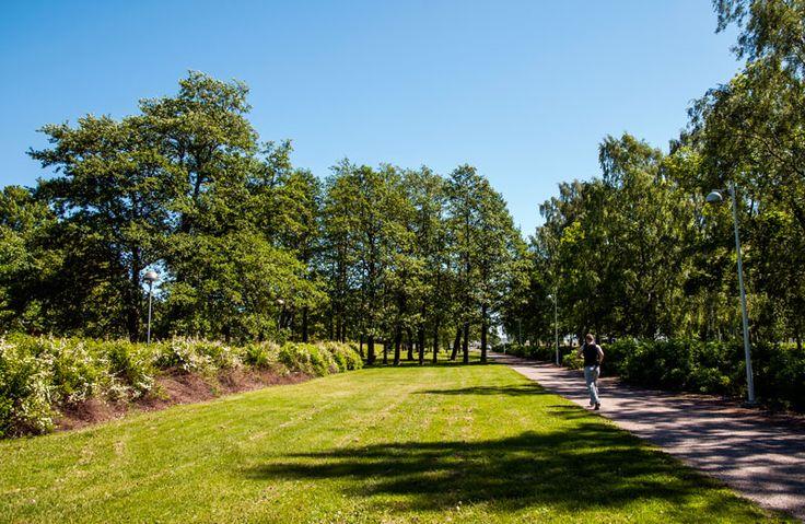 Laaja ja avara Pajalahden puisto soveltuu oleiluun ja kävelyyn [Anna Ruskovaara]