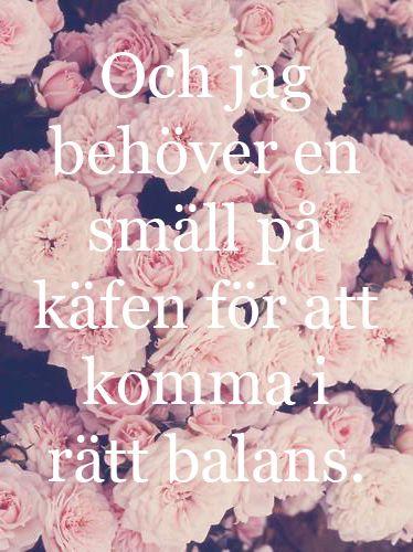 Håkan Hellström. Och jag behöver en smäll på käften för att komma i rätt balans. Här kommer lyckan för hundar som oss.