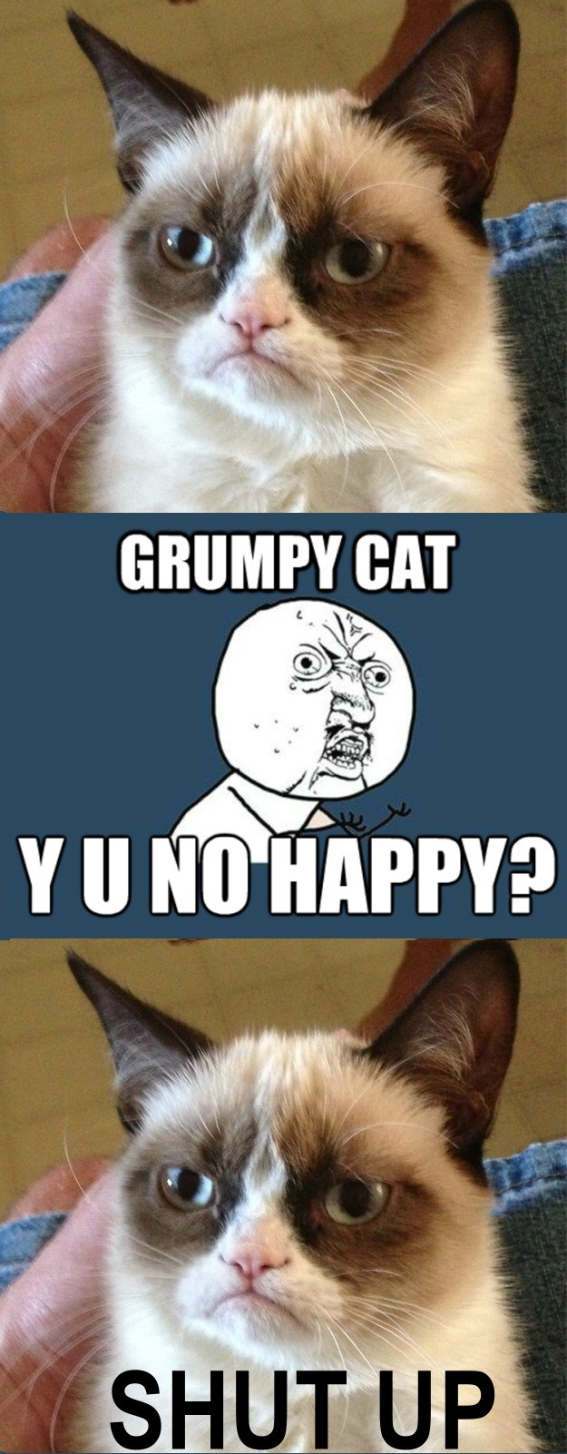 y u no grumpy cat crossover y u no pinterest cats no grumpy cat and haha. Black Bedroom Furniture Sets. Home Design Ideas