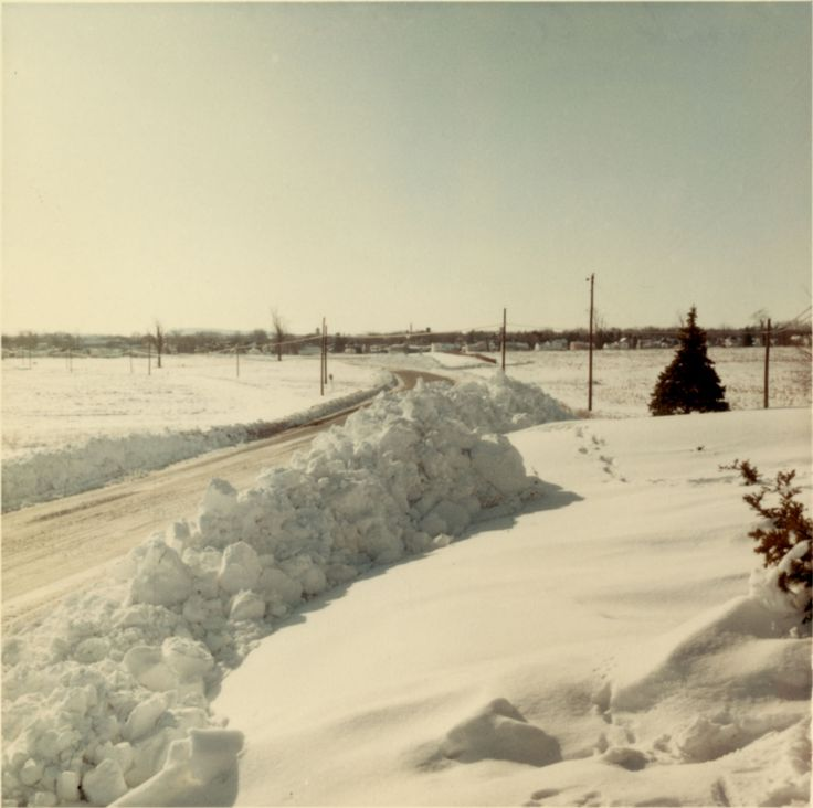 Here's a snow-covered road in Cumberland County following a storm in February 1966. This photo, preserved by the Pennsylvania State Archives, is safeguarded in the Records of the Department of Highways (RG-12) collection.  After 1970, the Department of Highways was replaced by the Pennsylvania Department of Transportation (PennDOT) .