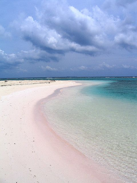 Point of Sand - Little Cayman - Cayman Islands: Little Cayman bezit een tropisch groene omgeving, prachtige stranden en azuurblauwe lagunes. Rond het eiland vind je een van de mooiste koraalriffen van de Caraïben.
