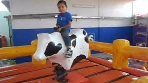 renta de toro mecanico para fiestas infantiles