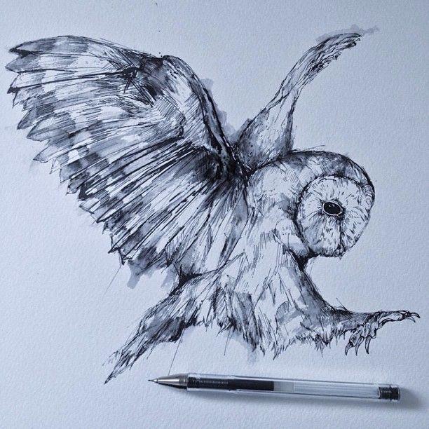 Alfred Basha Owl