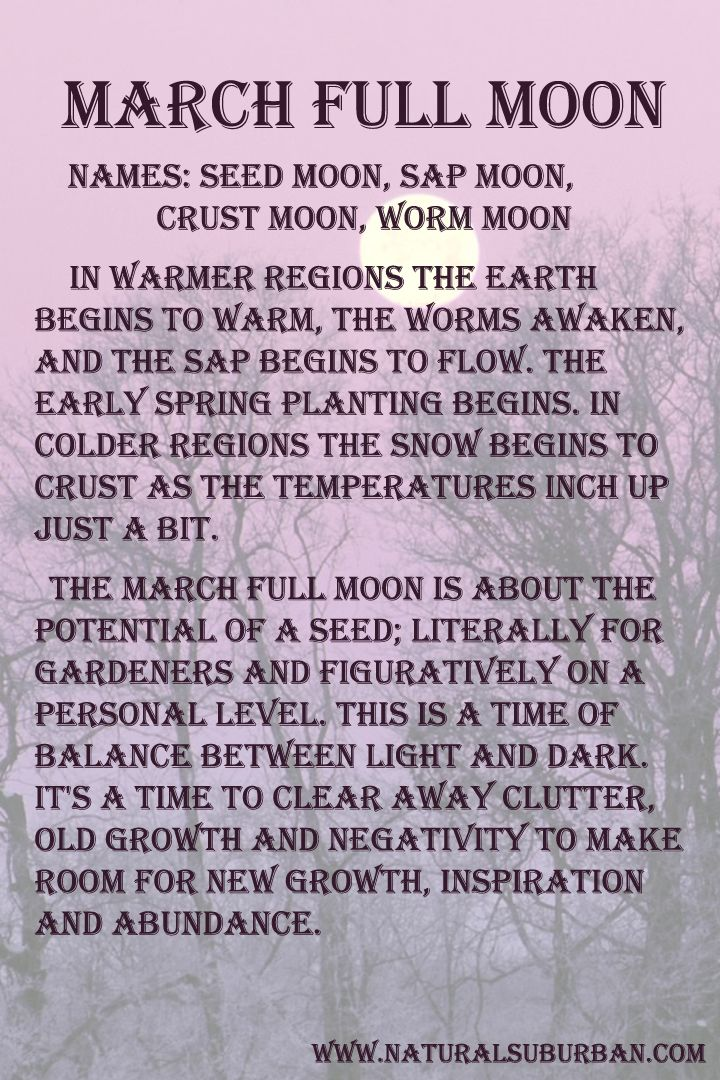 Moon:  #Full #Moon ~ March.