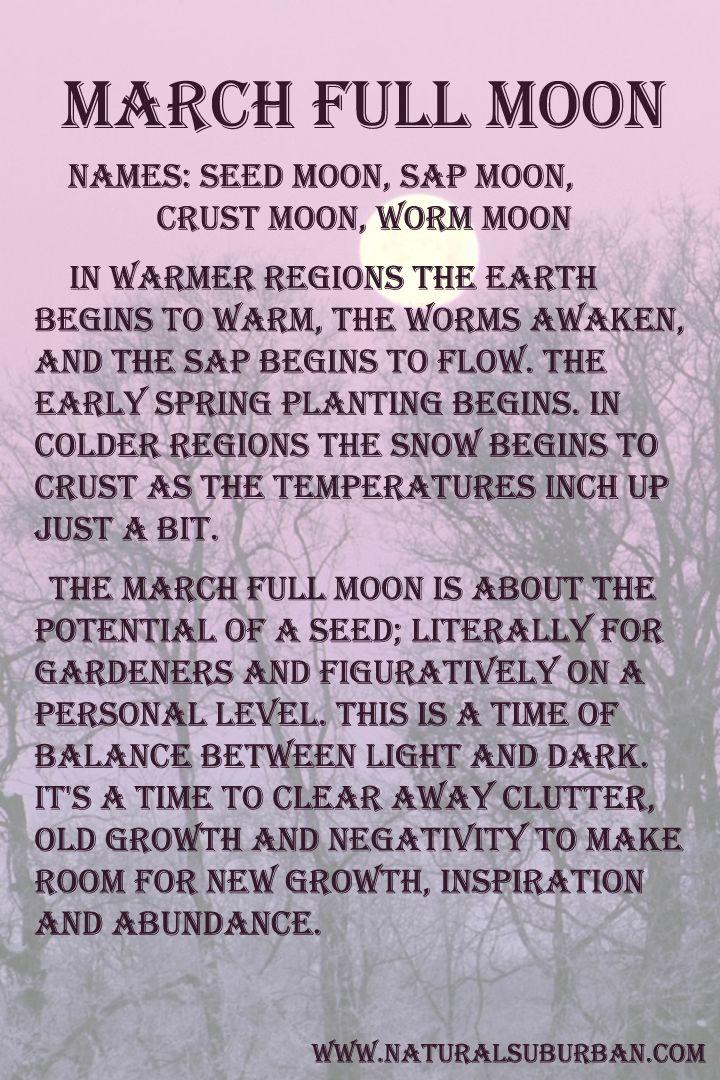 Mყรtєгเ๏ยร )○( M๏๏ภ )○( March ✦ Full Moon