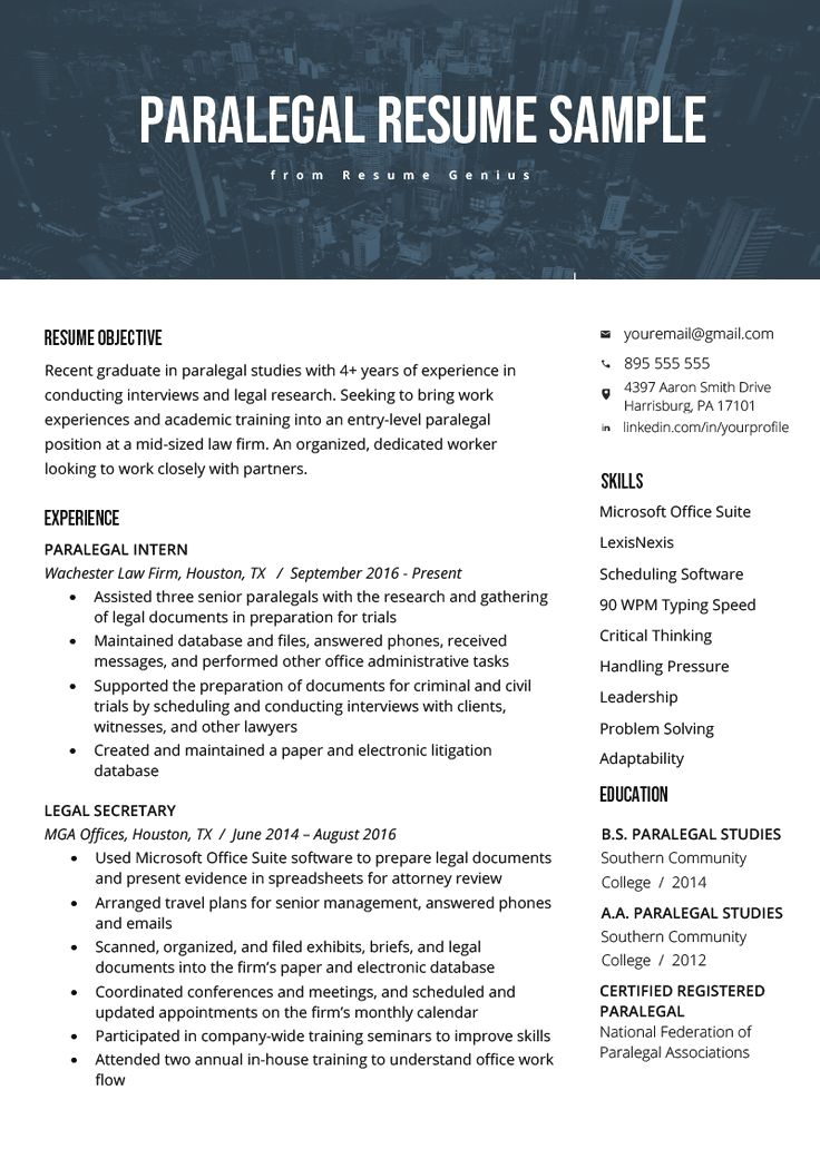 Professional Resume Template Instant Download 1 Page Resume Template For Ms Word Diy Resume T Resume Examples Resume Tips No Experience Basic Resume Examples
