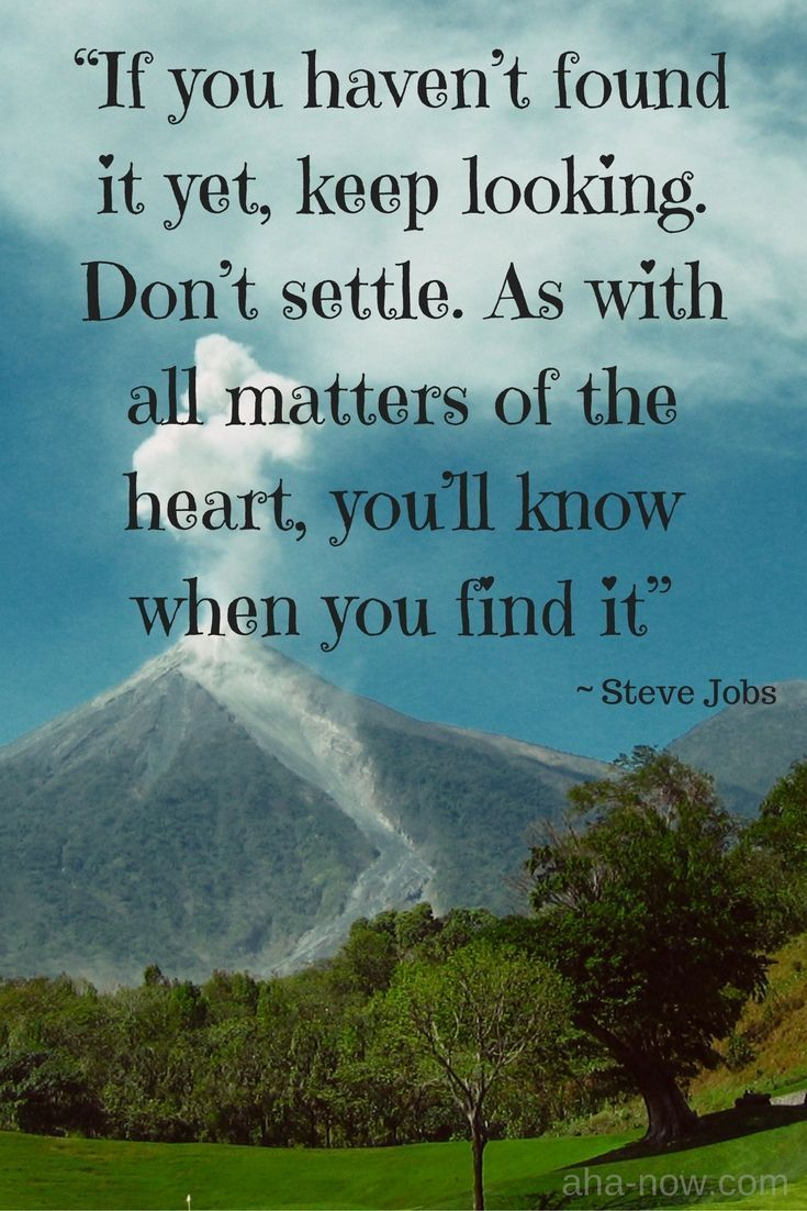 """""""If you haven't found it yet, keep looking. Don't settle. As with all matters of the heart, you'll know when you find it."""" ~ Steve Jobs #AhaNOW #quotes #thoughts #sayings #wisewords #wordsofwisdom #quoteoftheday"""