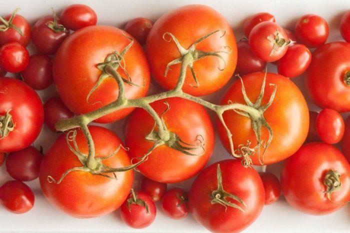 Beaucoup de personnes ont tendance à penser que le fait de placer les tomates au frigo leur permettra de rester fraîches… Grave erreur ! Au contraire, les tomates devraient idéalement être conservées à température ambiante. Au frigo, elles se rident et se flétrissent rapidement…  Placez vos tomates dans un bol recouvert de papier essuie-tout, avec les tiges orientées vers le haut.
