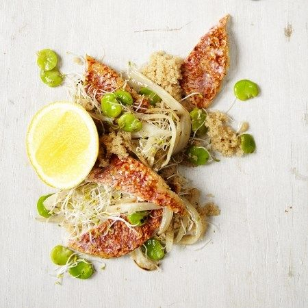 Red mullet, amaranth, fennel, broad beans, alfalfa sprouts