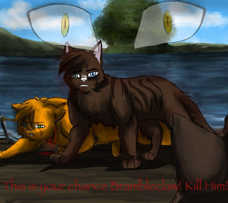 Warriors Erin Hunter Lost Stars: 94 Best Firestar Images On Pinterest