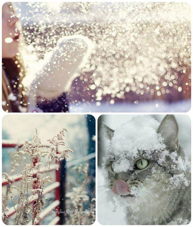 Ванильные мечты: Фотовдохновение. Уютная зима