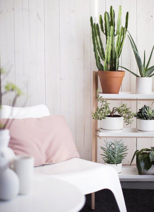 Designer Decor Secrets: How to Make a Huge Impact With Multipleshttp://www.apartmenttherapy.com/designer-decor-secrets-how-to-make-a-huge-impact-with-multiples-211641
