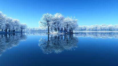 木 へん に 冬