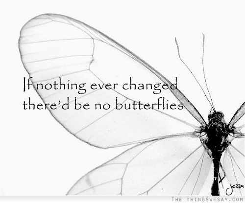 ...there would be no butterflies #Quote #life #change