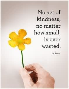 No Act Of Kindness No Matter How Small Is Ever Wasted - Donation Quote