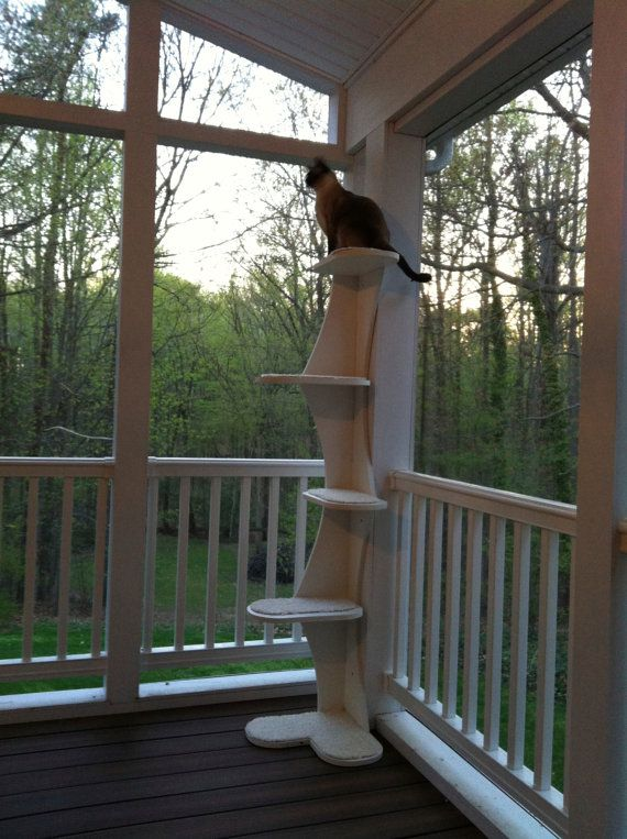 """This lucky cat is enjoying the view with an Outdoor Composite Climbing Cat Tower for Porches, Patios, 68"""" cat tree w/ no-snag carpeting. Outdoor cat furniture.Free Shipping!..."""