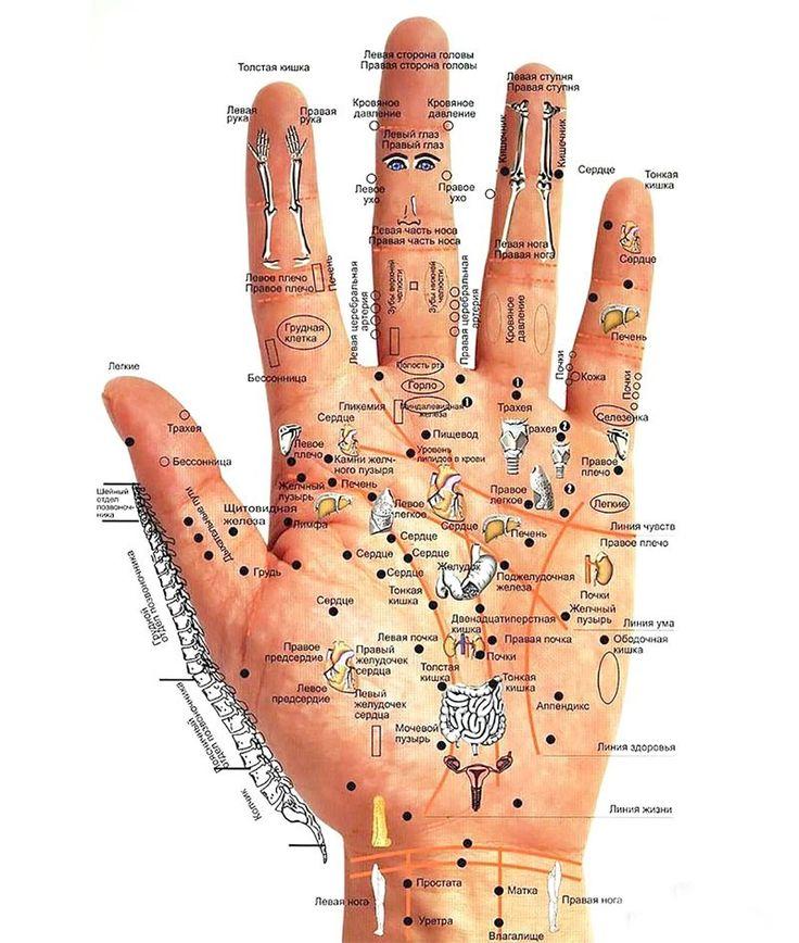 Болезни человека — на его руках. Будь внимателен — меньше будешь болеть! | Новость | Всеукраинская ассоциация пенсионеров