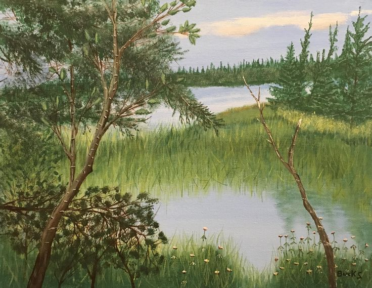 Forested Pond