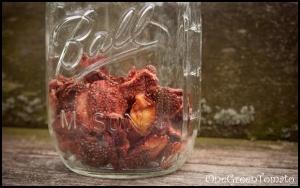 Dehydrated Strawberries #DIY Yum!