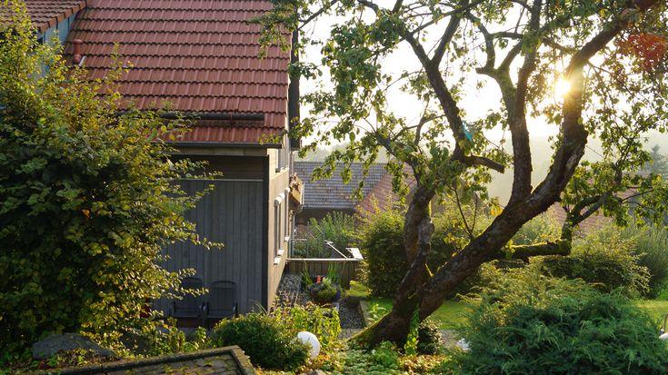 Im Garten stehen viele alte Obstbäume. Urlaub in hessen