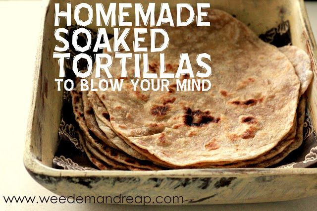 Weed 'em and Reap: Homemade Soaked Tortillas (to blow your mind!)