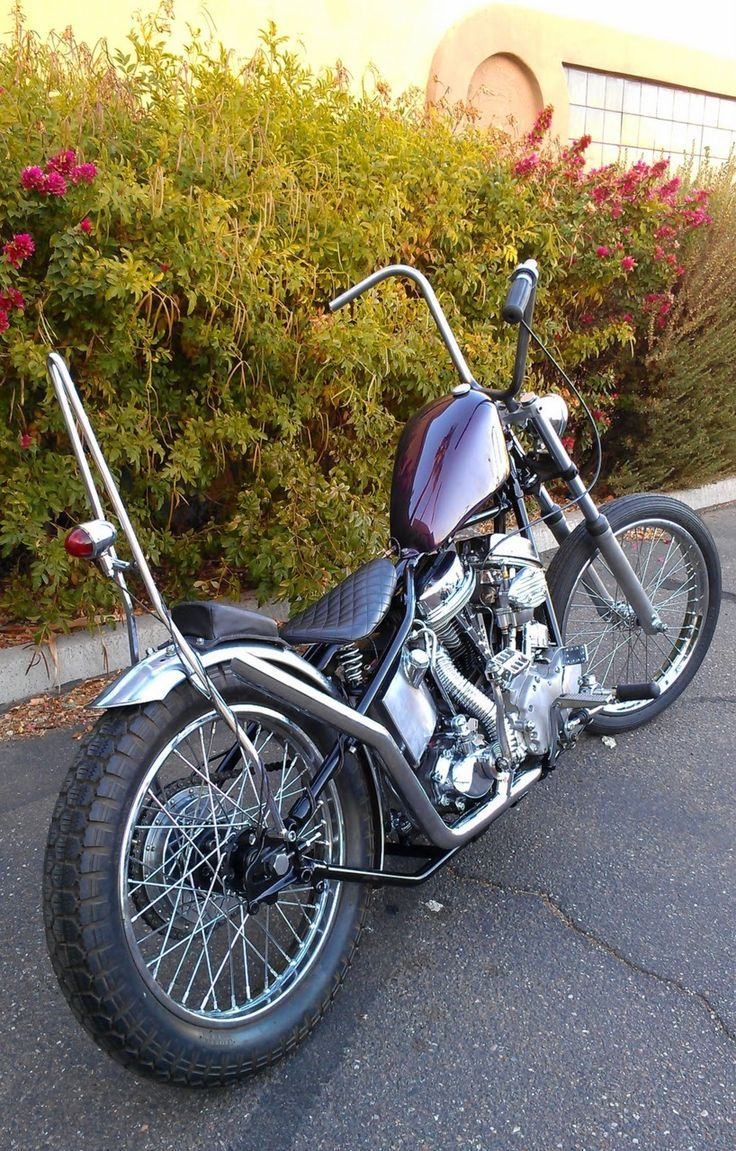 223 best cool panheads images
