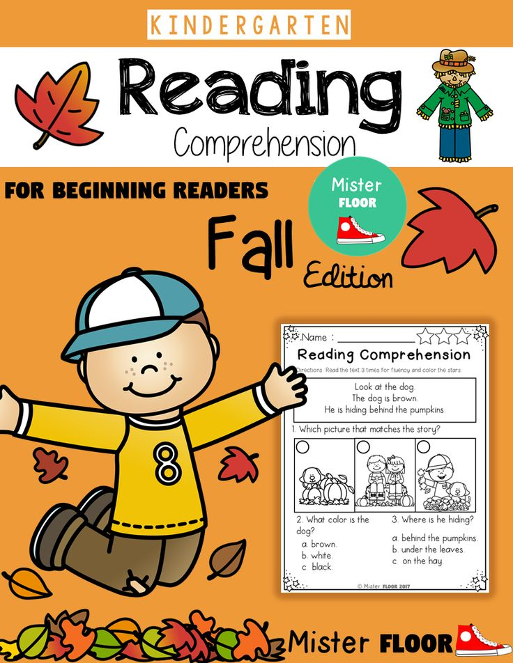 Theese Reading Comprehension Packet is filled with 20 pages to help build comprehension and designed for emergent readers and early readers and is perfect for K-1 students.