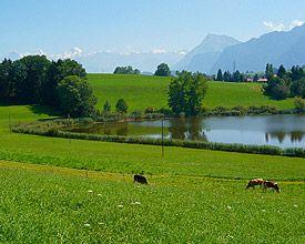 Route du Coeur, route 99 - Schweiz Mobil - Veloland