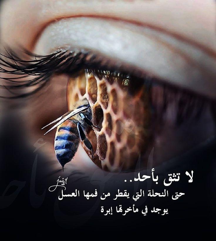 لا تثق بأحد حتى النحلة التي يقطر من فمها العسل يوجد في مأخرتها إبرة Rings For Men Jewelry Rings