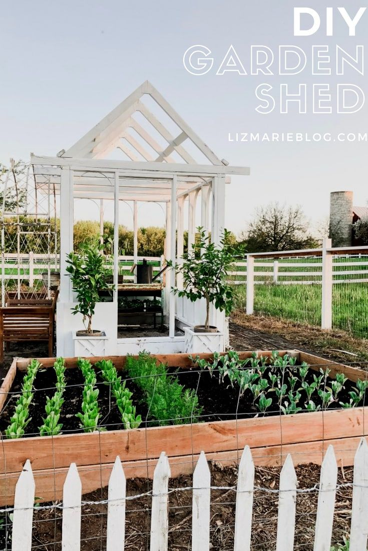 Diy Greenhouse Garden Shed Diy Greenhouse Greenhouse Gardening Stock Tank Gardening Backyard greenhouse garden shed