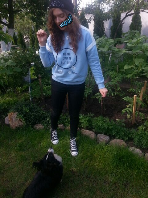Lana Nguyen Are you kitten me now Sweatshirt
